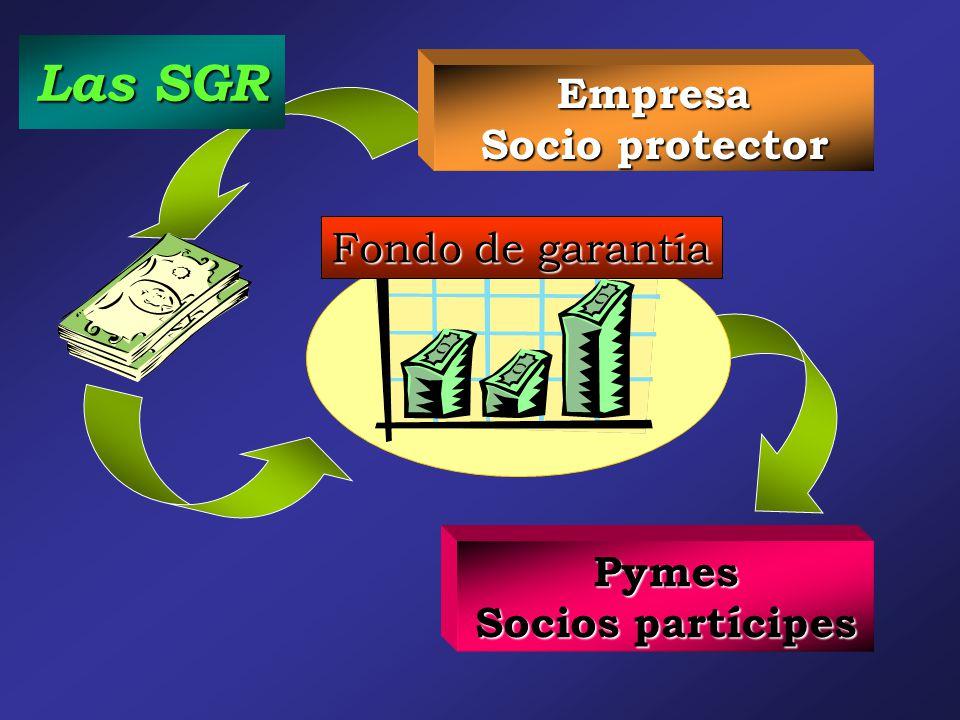 Empresa Socio protector Las SGR Pymes Socios partícipes Fondo de garantía