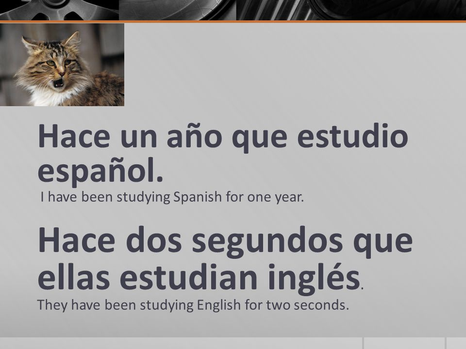 Hace un año que estudio español. I have been studying Spanish for one year.