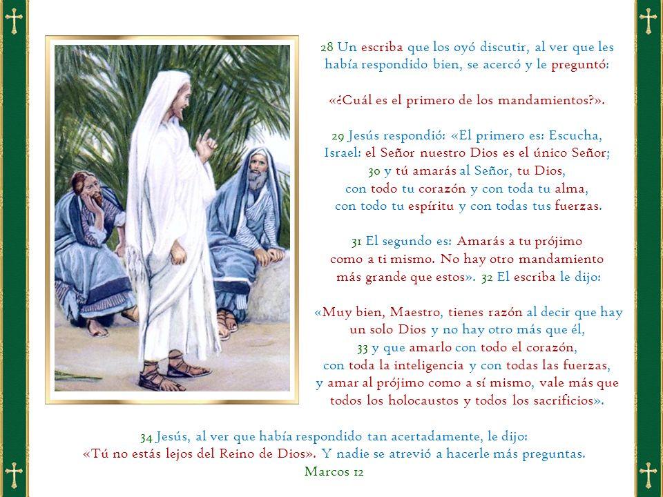 28 Un escriba que los oyó discutir, al ver que les había respondido bien, se acercó y le preguntó: «¿Cuál es el primero de los mandamientos ».