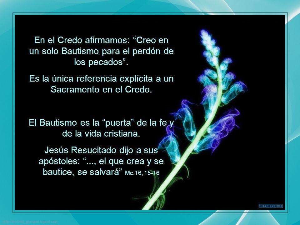 CATEQUESIS PAPALES Año de la FE 2012 - 2013 Resumen de la Catequesis del Papa Francisco, del miércoles 13 de noviembre, 2013 Ps.