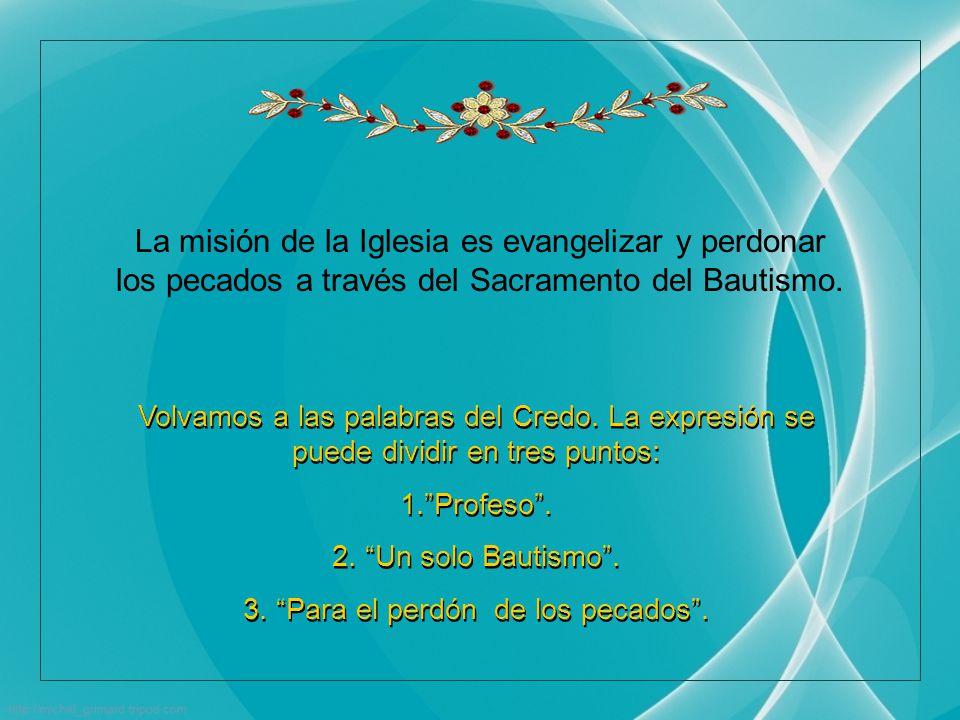 En el Credo afirmamos: Creo en un solo Bautismo para el perdón de los pecados .