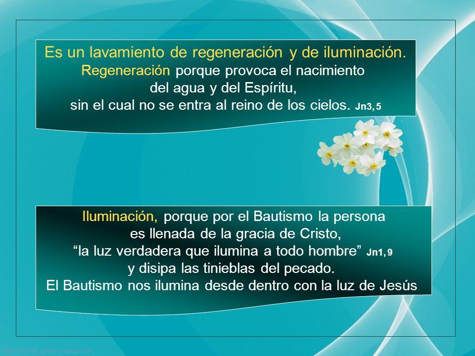 Esta expresión recuerda la de San Pablo: Un solo Señor, una sola fe, un solo bautismo Ef.4, 5 Bautismo significa literalmente inmersión , es una verdadera inmersión espiritual.
