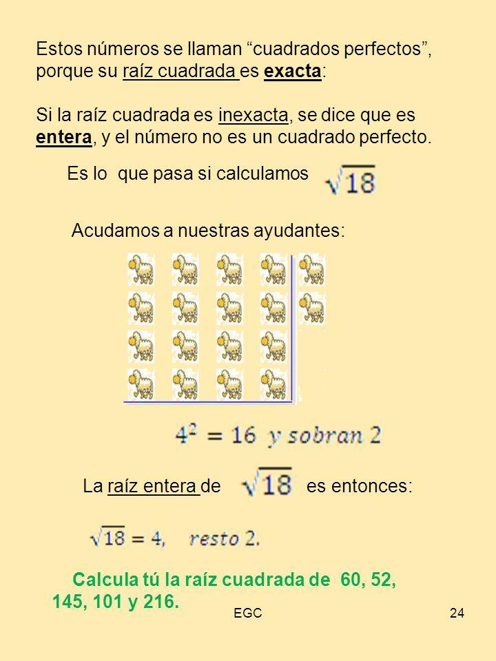 """24 Estos números se llaman """"cuadrados perfectos"""", porque su raíz cuadrada es exacta: Si la raíz cuadrada es inexacta, se dice que es entera, y el núme"""