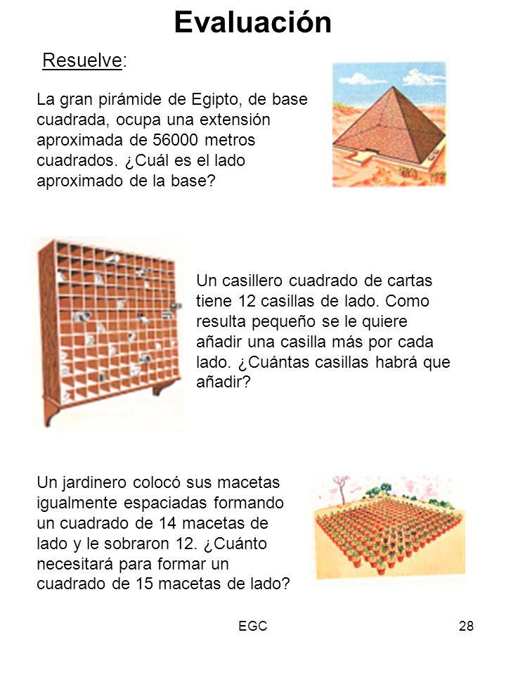 28 La gran pirámide de Egipto, de base cuadrada, ocupa una extensión aproximada de 56000 metros cuadrados. ¿Cuál es el lado aproximado de la base? Res