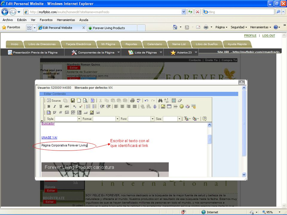 Escribir el texto con el que identificará el link
