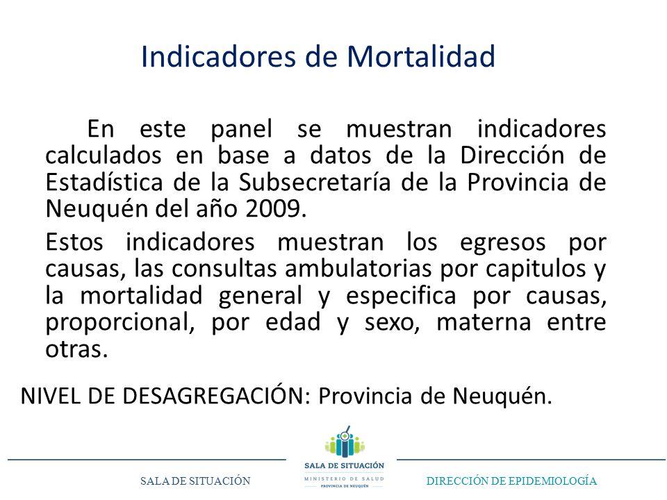 En este panel se muestran indicadores calculados en base a datos de la Dirección de Estadística de la Subsecretaría de la Provincia de Neuquén del año 2009.