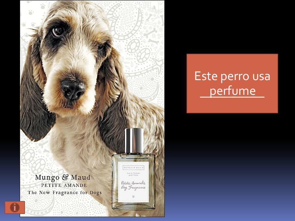 Este perro usa __________ perfume