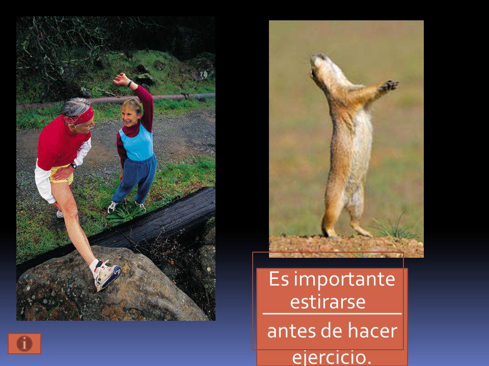 Es importante _____________ antes de hacer ejercicio. estirarse