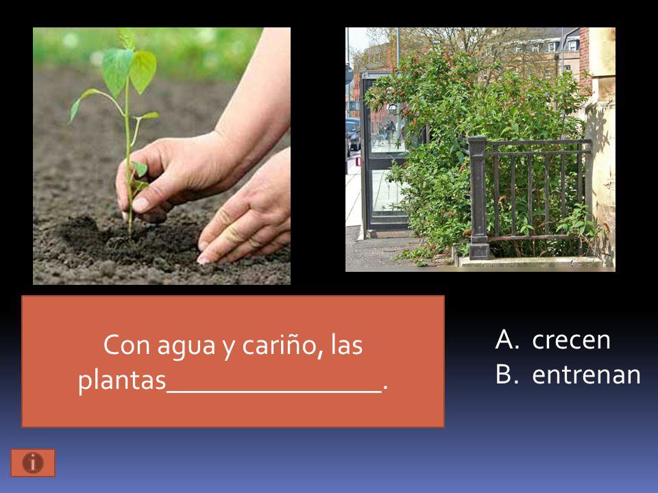 Con agua y cariño, las plantas_______________. A.crecen B.entrenan
