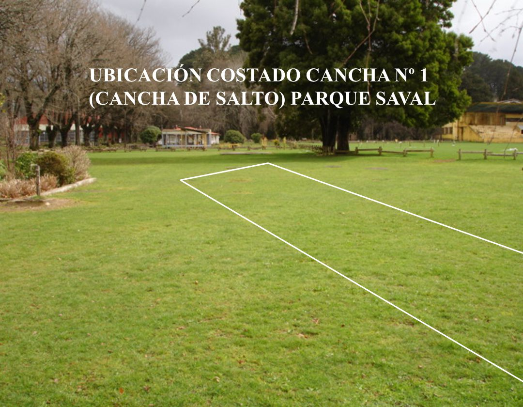 UBICACIÓN COSTADO CANCHA Nº 1 (CANCHA DE SALTO) PARQUE SAVAL