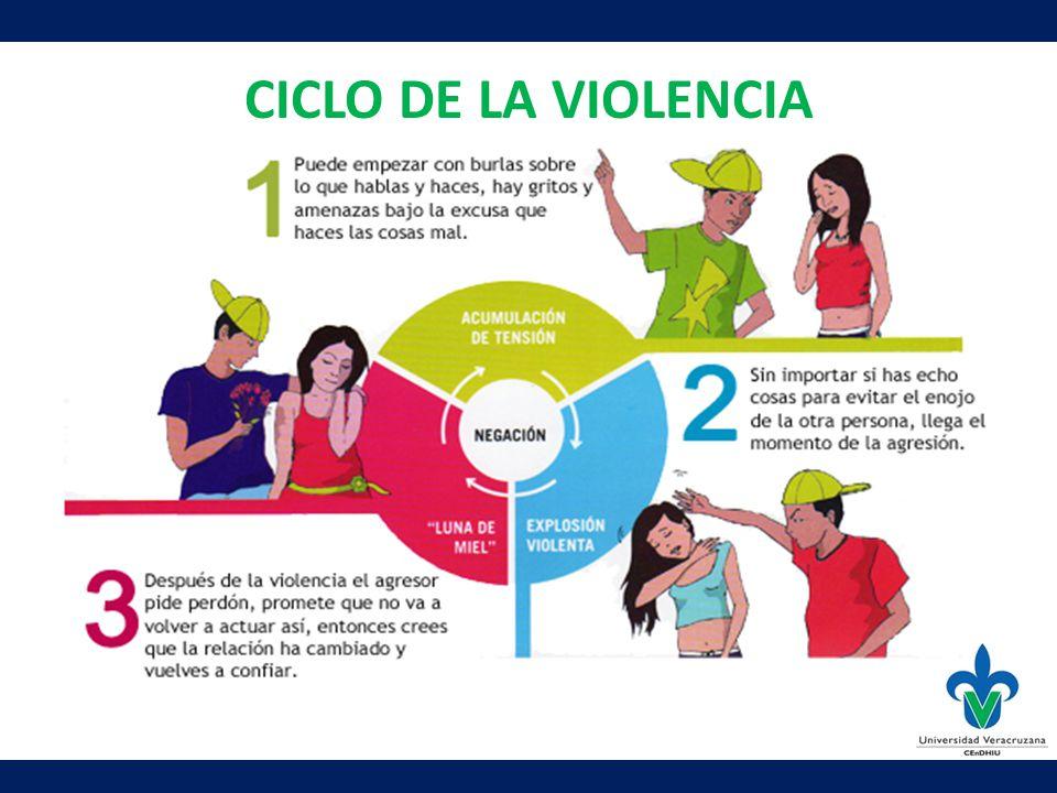 CICLO DE LA VIOLENCIA