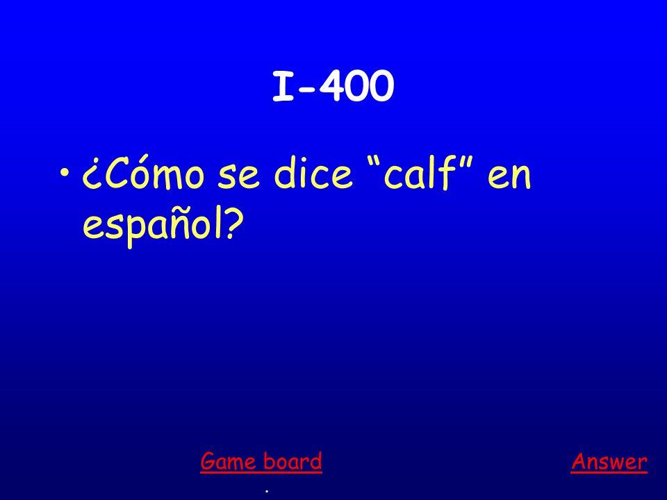 I-300 ¿Cómo se dice leg en español Answer. Game board
