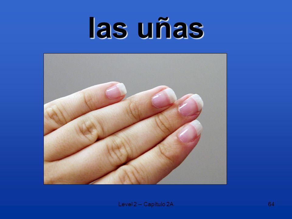 Level 2 -- Capítulo 2A64 las uñas