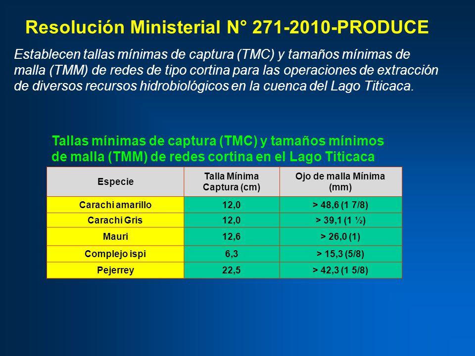 Especie Talla Mínima Captura (cm) Ojo de malla Mínima (mm) Carachi amarillo12,0> 48,6 (1 7/8) Carachi Gris12,0> 39,1 (1 ½) Mauri12,6> 26,0 (1) Complejo ispi6,3> 15,3 (5/8) Pejerrey22,5> 42,3 (1 5/8) Resolución Ministerial N° 271-2010-PRODUCE Establecen tallas mínimas de captura (TMC) y tamaños mínimas de malla (TMM) de redes de tipo cortina para las operaciones de extracción de diversos recursos hidrobiológicos en la cuenca del Lago Titicaca.