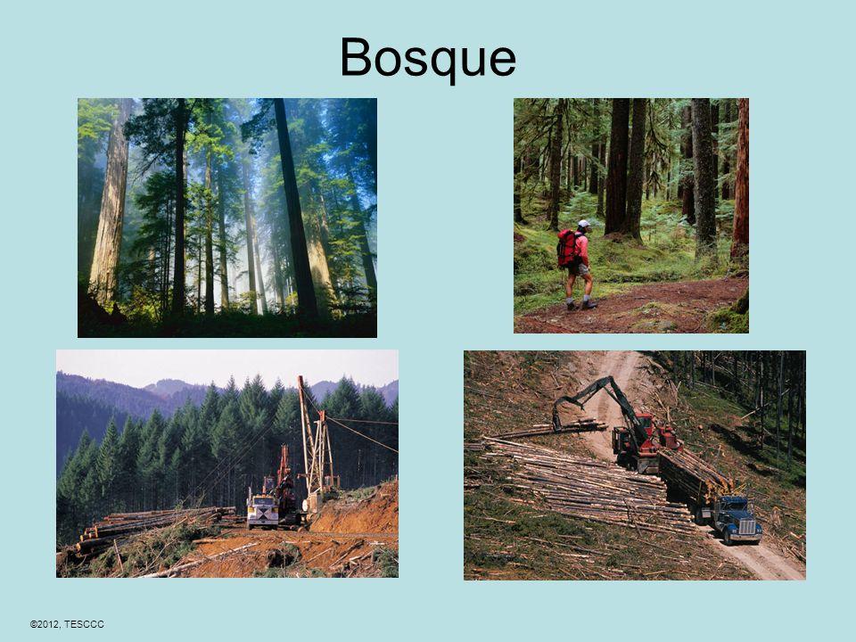 ©2012, TESCCC Bosque