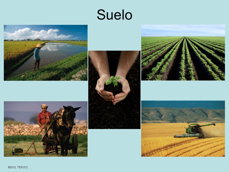 ©2012, TESCCC Suelo