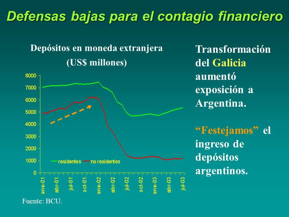 Defensas bajas para el contagio financiero Depósitos en moneda extranjera (US$ millones) Transformación del Galicia aumentó exposición a Argentina.