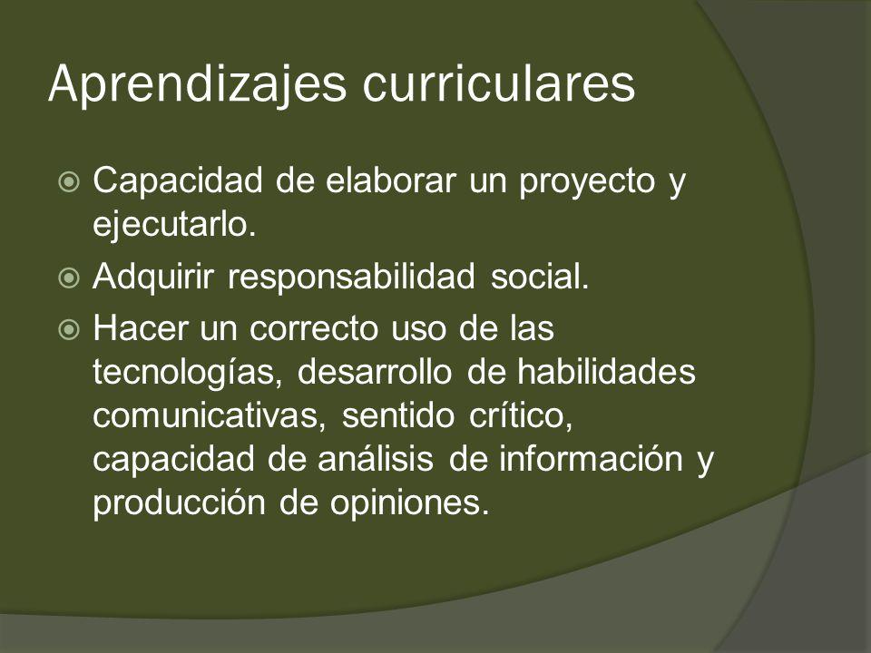 Aprendizajes curriculares  Capacidad de elaborar un proyecto y ejecutarlo.