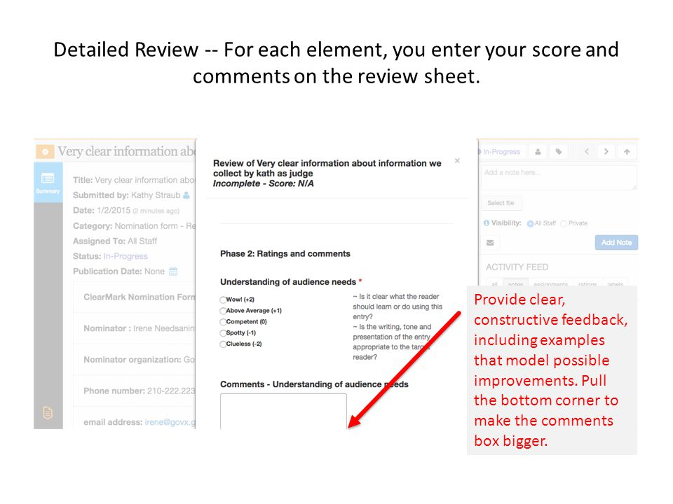 Detailed Review -- For each element, you enter your score and comments on the review sheet.
