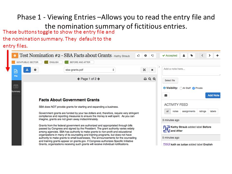 Phase 1 - Viewing Entries –Allows you to read the entry file and the nomination summary of fictitious entries.