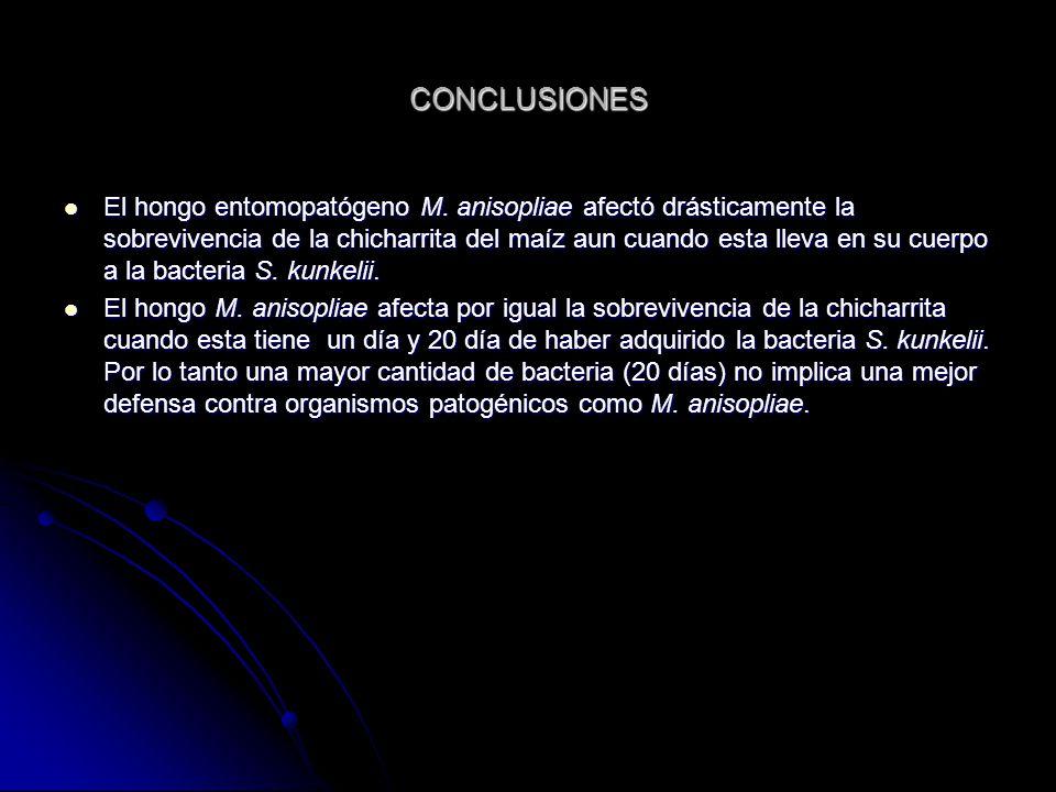 CONCLUSIONES El hongo entomopatógeno M.