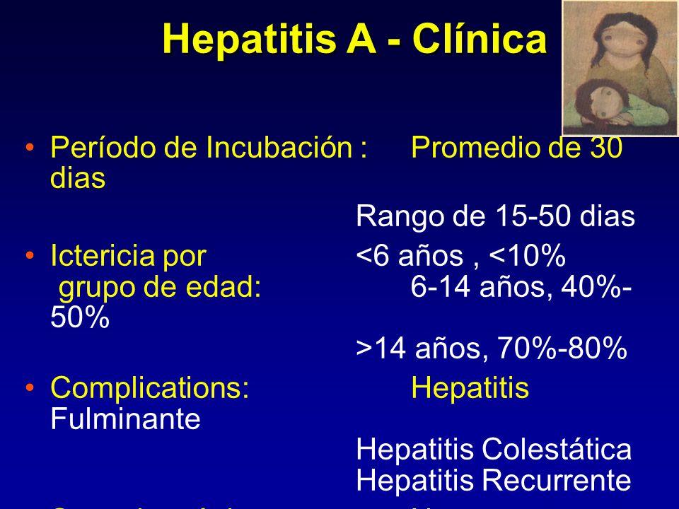 Fecal HAV Síntomas ALT IgM anti-HAV Total anti- HAV Meses después de la Exposición Titulo Curso serológico Típico 0123 4561212 2424 Infección por Virus de la Hepatitis A