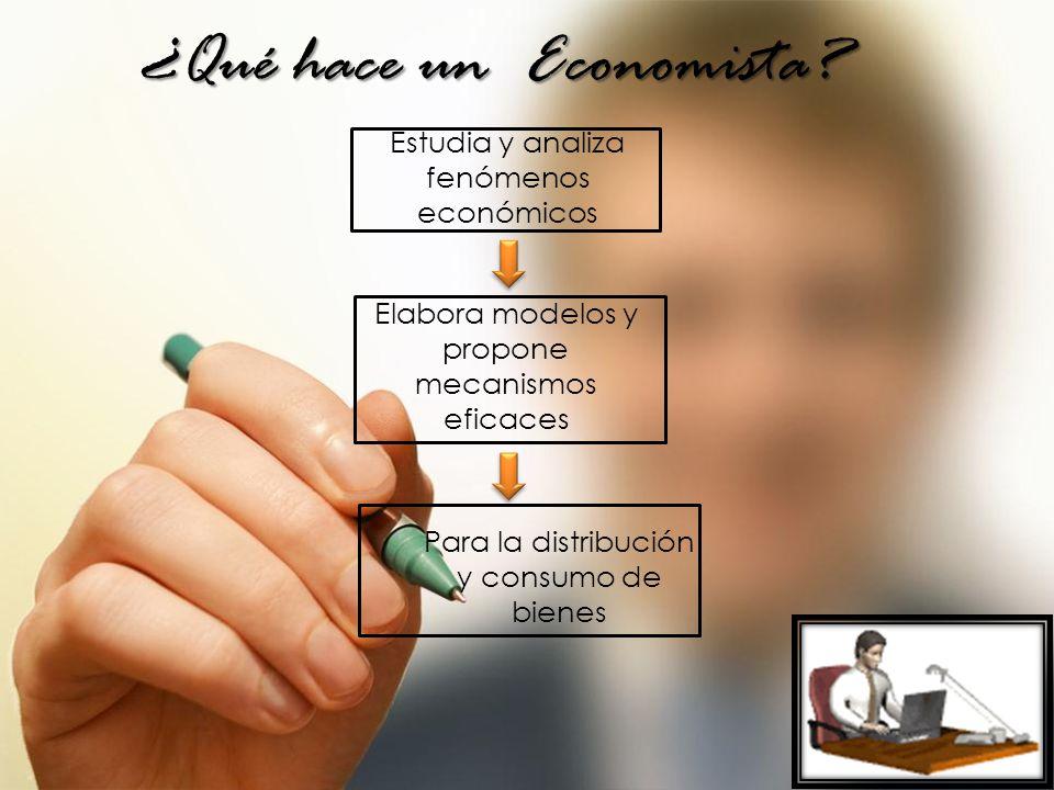 ¿Qué hace un Economista.
