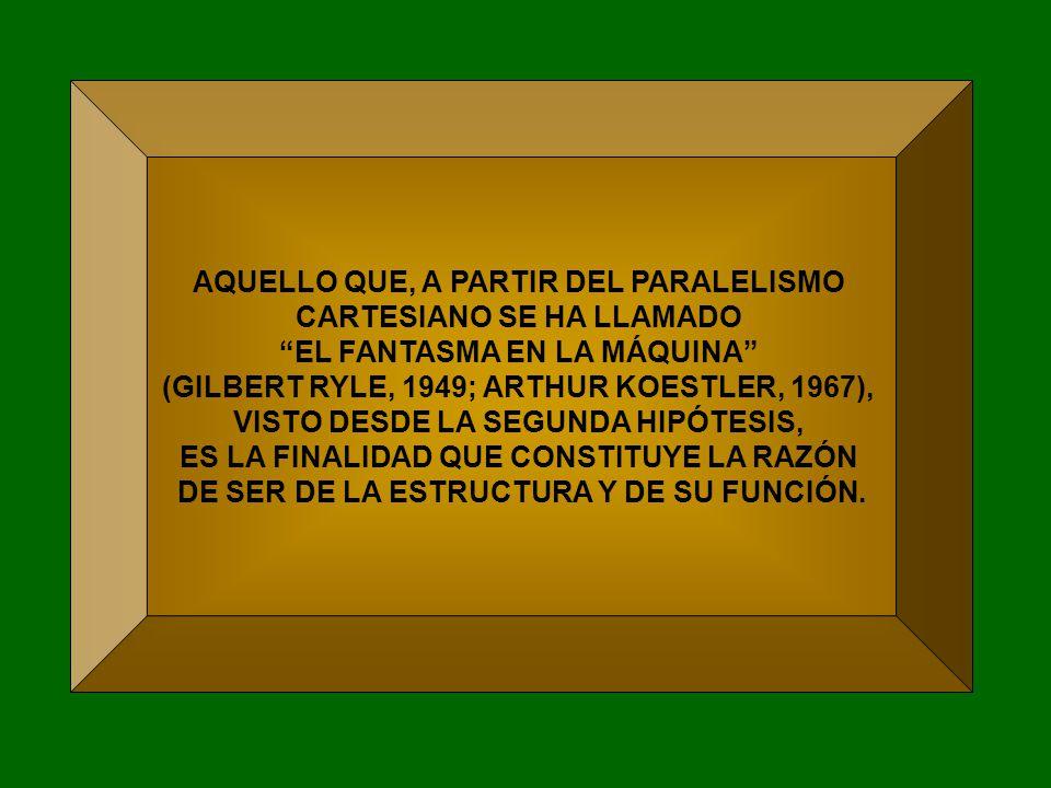AQUELLO QUE, A PARTIR DEL PARALELISMO CARTESIANO SE HA LLAMADO EL FANTASMA EN LA MÁQUINA (GILBERT RYLE, 1949; ARTHUR KOESTLER, 1967), VISTO DESDE LA SEGUNDA HIPÓTESIS, ES LA FINALIDAD QUE CONSTITUYE LA RAZÓN DE SER DE LA ESTRUCTURA Y DE SU FUNCIÓN.