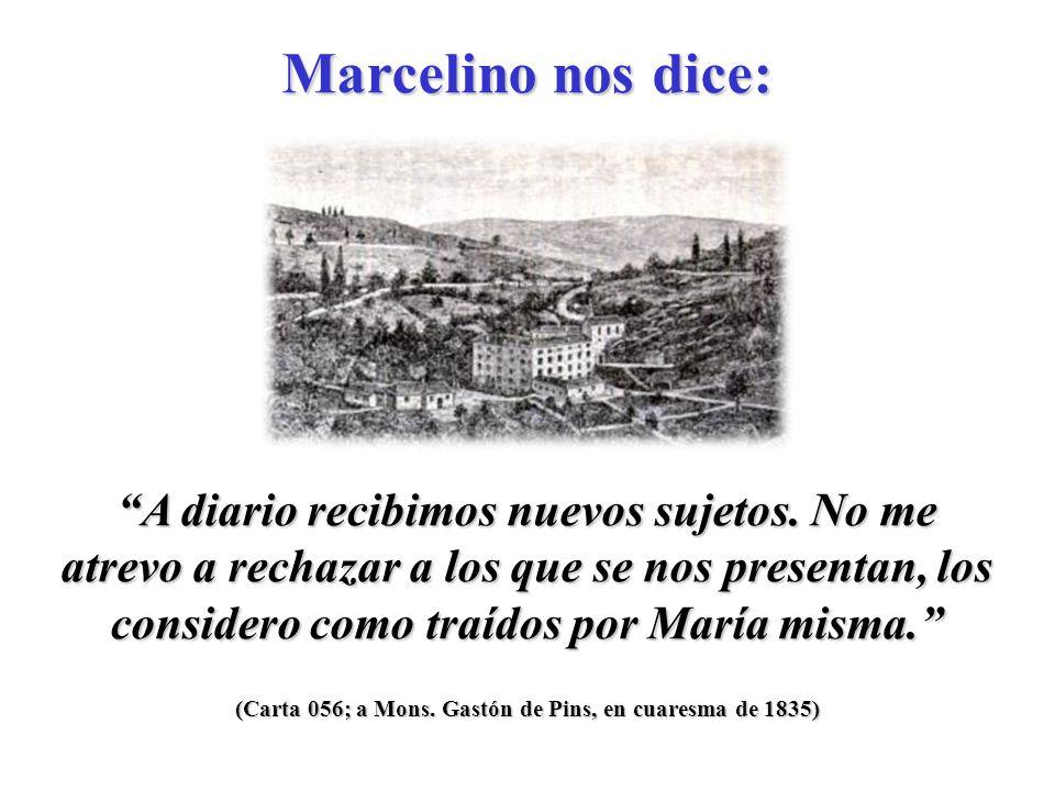 (Carta 055; al P.