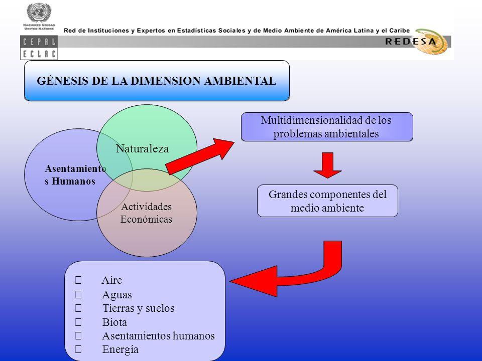 Asentamiento s Humanos Naturaleza Actividades Económicas Multidimensionalidad de los problemas ambientales GÉNESIS DE LA DIMENSION AMBIENTAL Grandes componentes del medio ambiente  Aire  Aguas  Tierras y suelos  Biota  Asentamientos humanos  Energía
