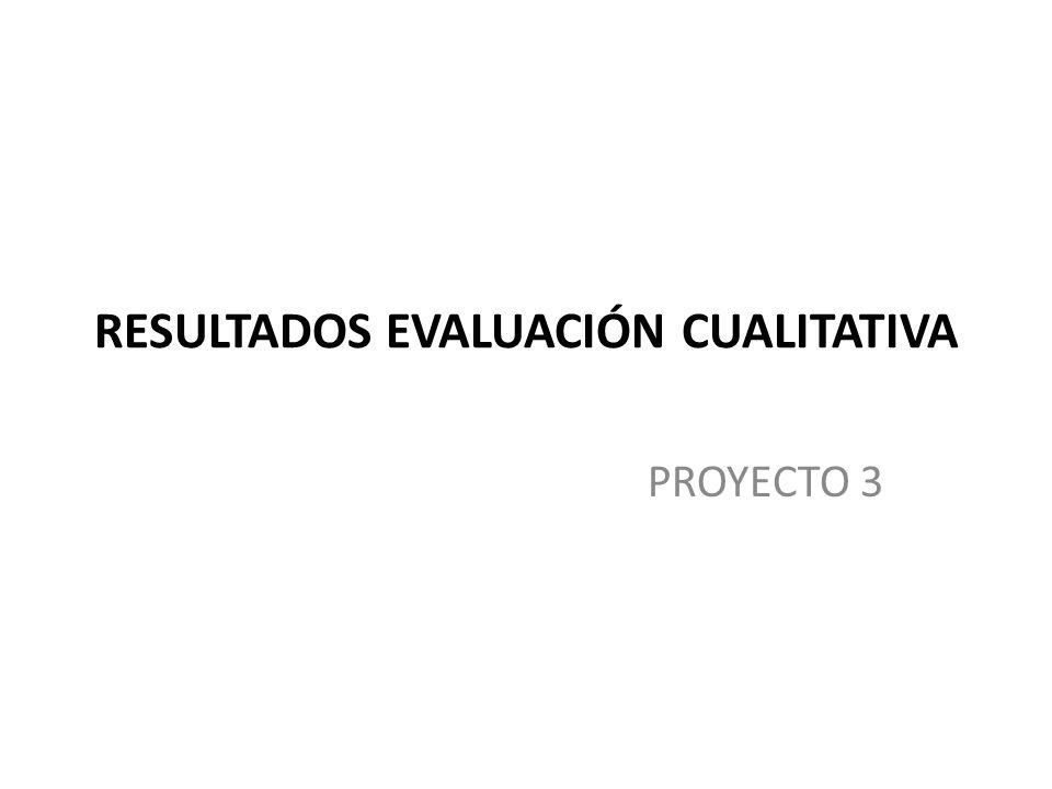 RESULTADOS EVALUACIÓN CUALITATIVA PROYECTO 3