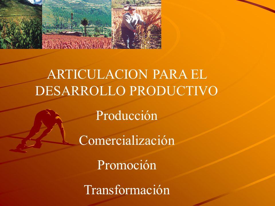 ARTICULACION PARA EL DESARROLLO PRODUCTIVO Producción Comercialización Promoción Transformación