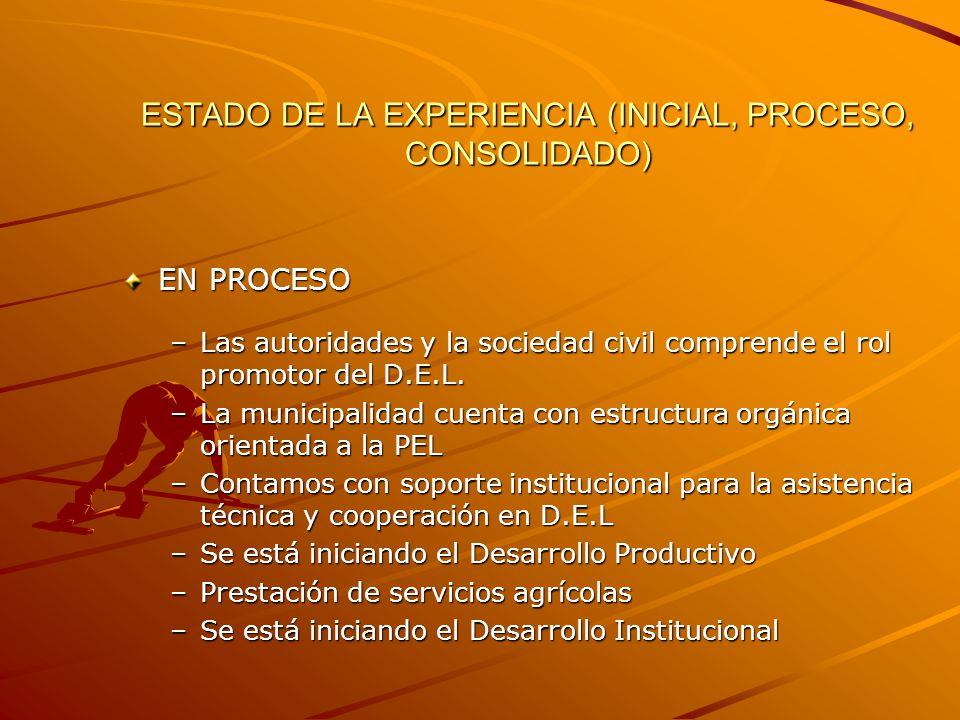 ESTADO DE LA EXPERIENCIA (INICIAL, PROCESO, CONSOLIDADO) EN PROCESO –Las autoridades y la sociedad civil comprende el rol promotor del D.E.L.