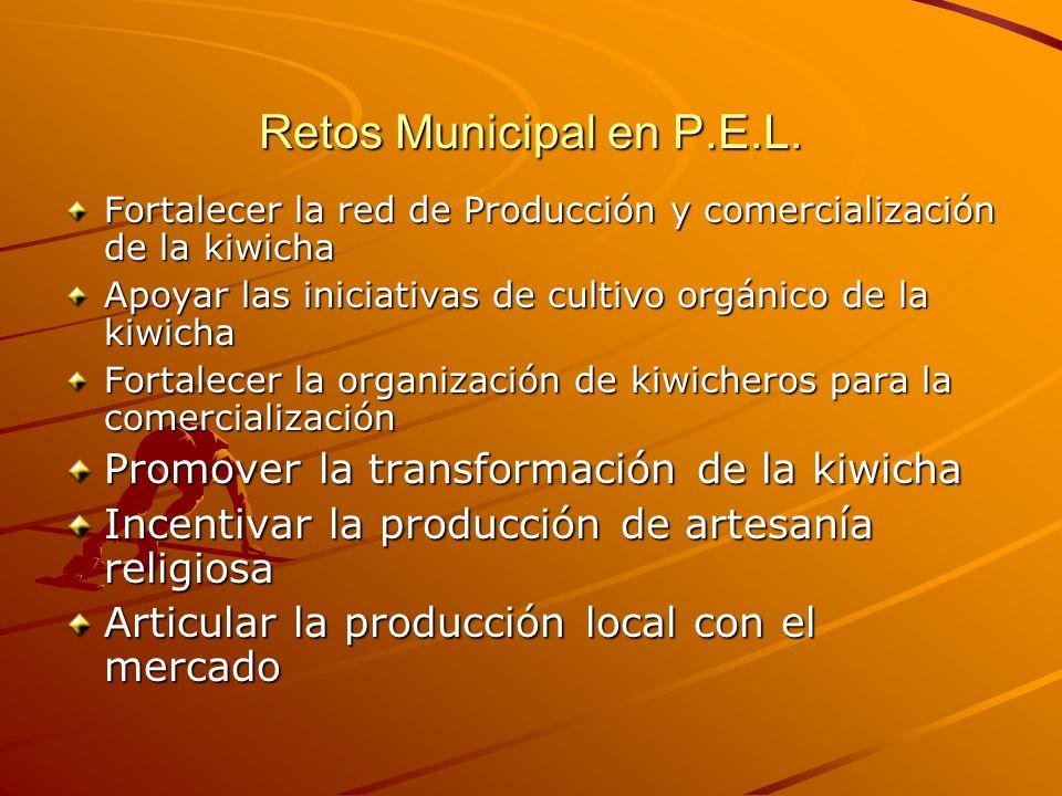 Retos Municipal en P.E.L.