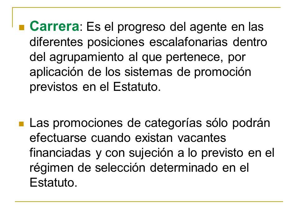 Carrera : Es el progreso del agente en las diferentes posiciones escalafonarias dentro del agrupamiento al que pertenece, por aplicación de los sistemas de promoción previstos en el Estatuto.