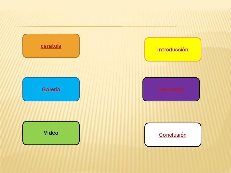 caratula Galería Video Introducción Desarrollo Conclusión