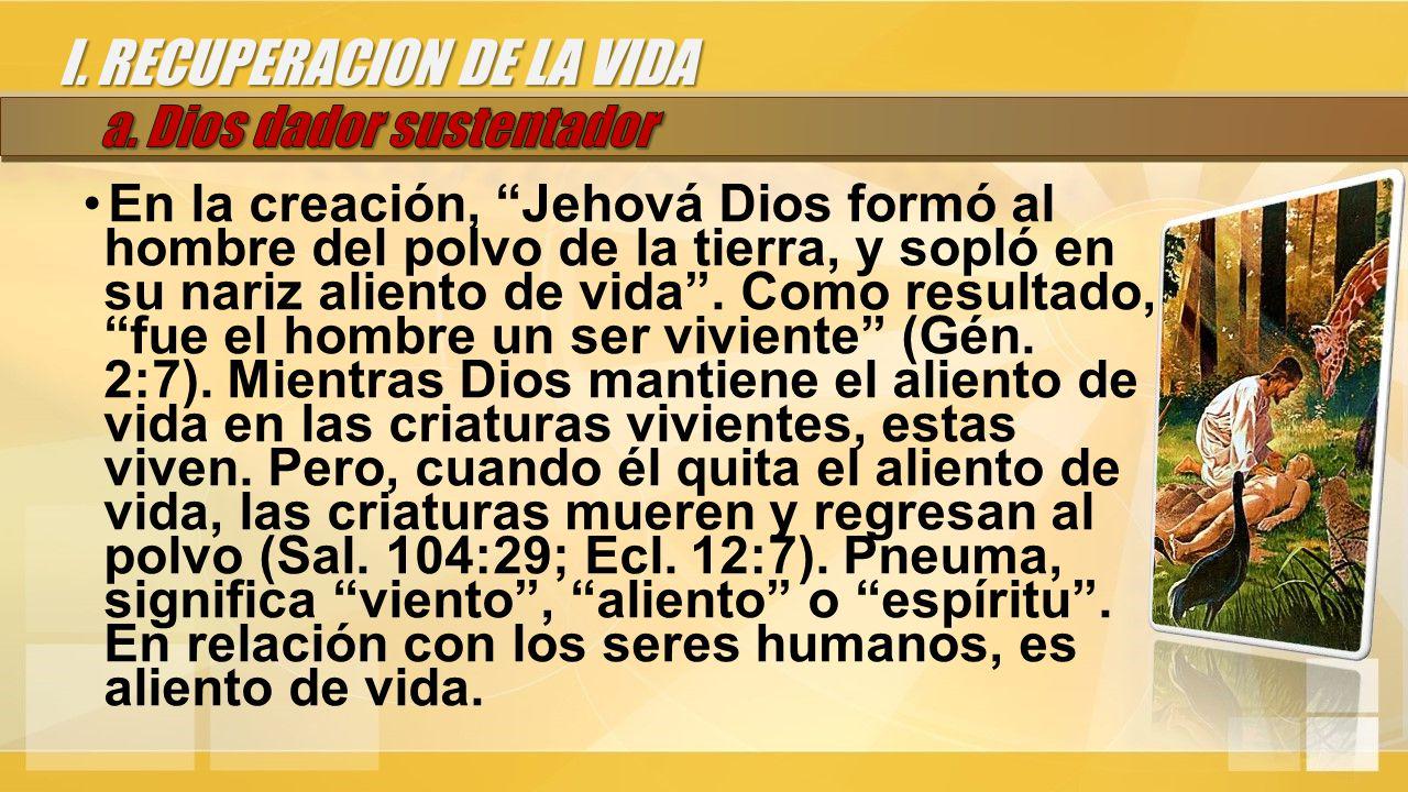 En la creación, Jehová Dios formó al hombre del polvo de la tierra, y sopló en su nariz aliento de vida .