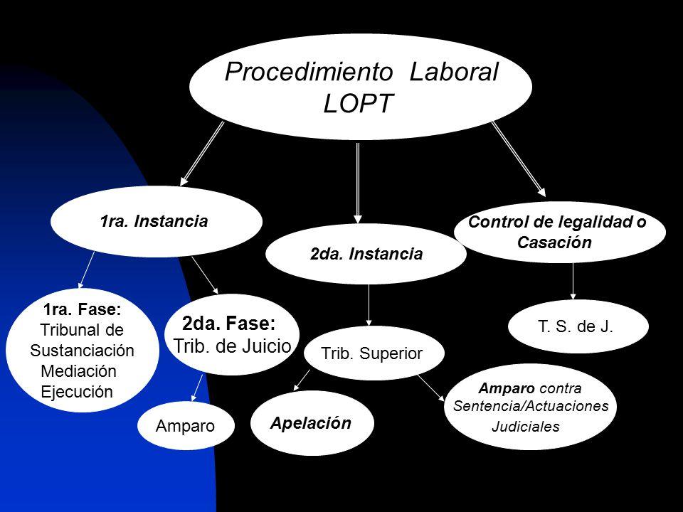 LEGALIDAD DE LAS FORMAS PROCESALES: Los actos procesales se desarrollaran de acuerdo a la Ley, en ausencia de disposición expresa, el juez determinará los criterios a seguir para su realización, aplicando la analogía.