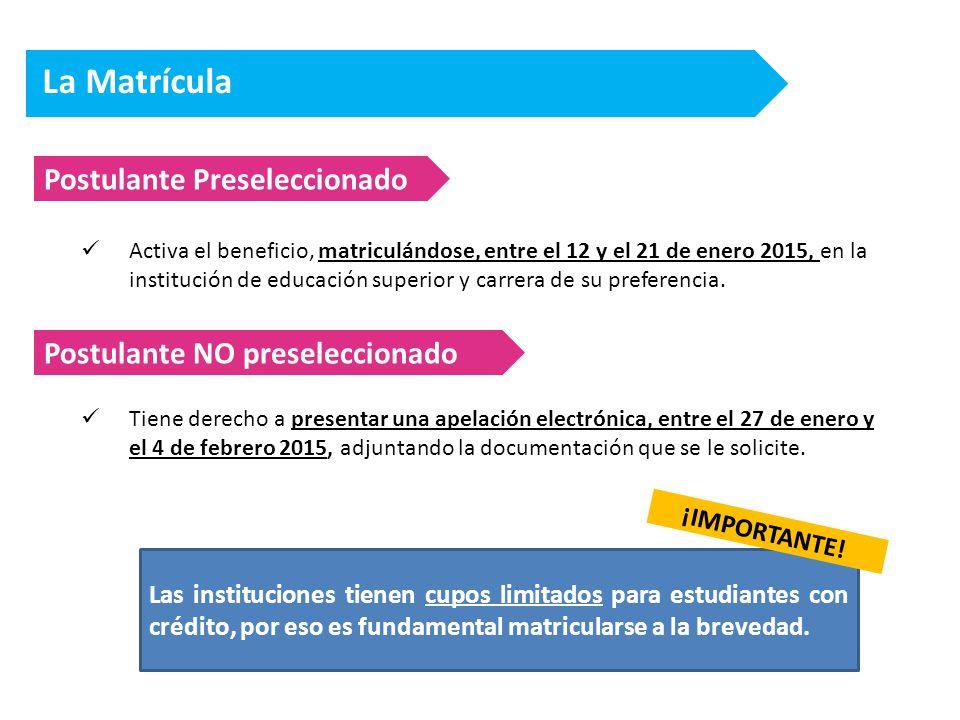 La Matrícula Postulante Preseleccionado Activa el beneficio, matriculándose, entre el 12 y el 21 de enero 2015, en la institución de educación superior y carrera de su preferencia.