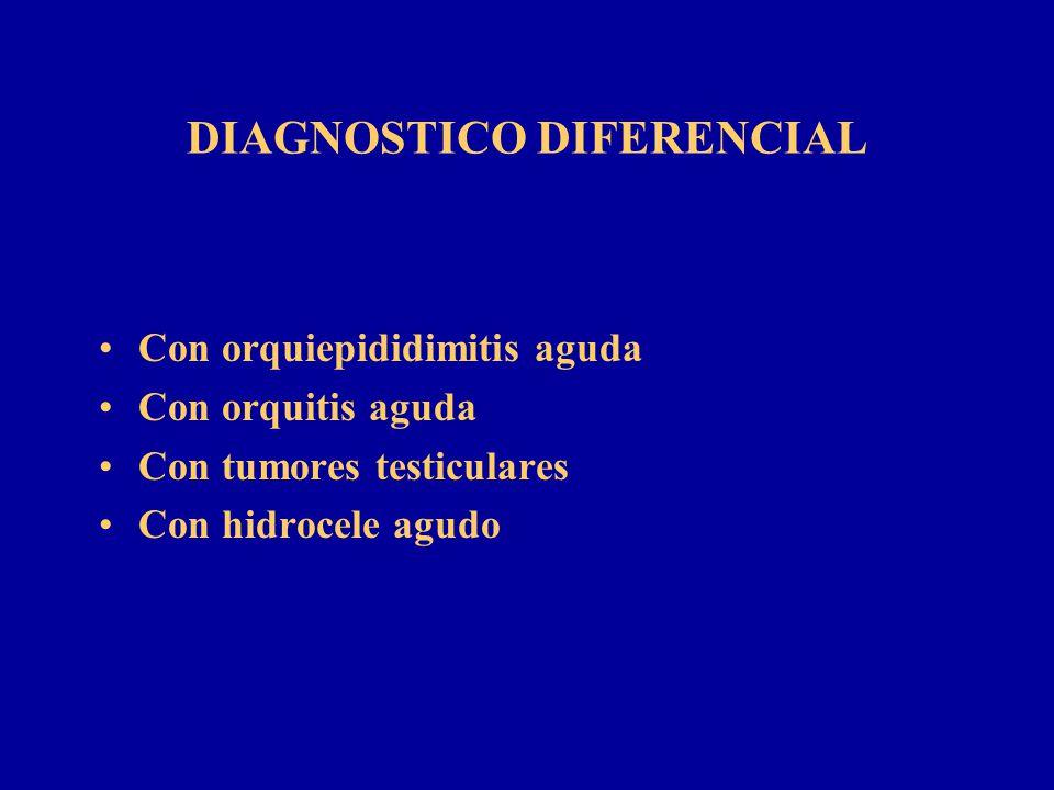 DIAGNOSTICO DIFERENCIAL Con orquiepididimitis aguda Con orquitis aguda Con tumores testiculares Con hidrocele agudo