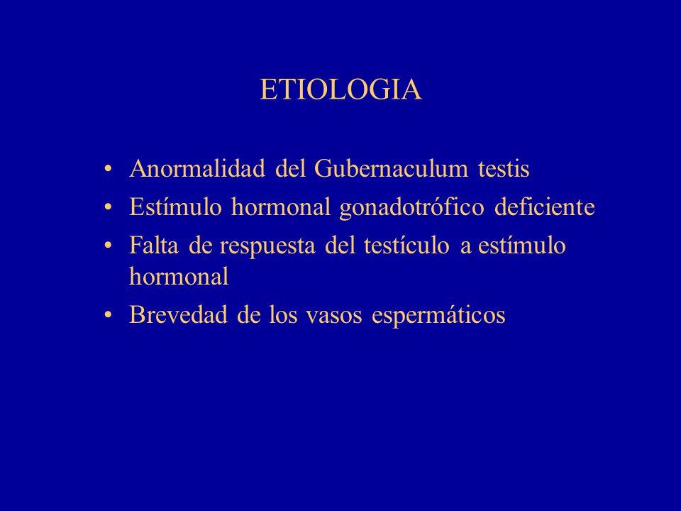 ETIOLOGIA Anormalidad del Gubernaculum testis Estímulo hormonal gonadotrófico deficiente Falta de respuesta del testículo a estímulo hormonal Brevedad