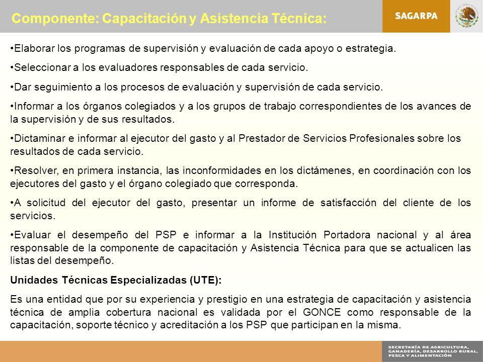 Componente: Capacitación y Asistencia Técnica: Elaborar los programas de supervisión y evaluación de cada apoyo o estrategia.