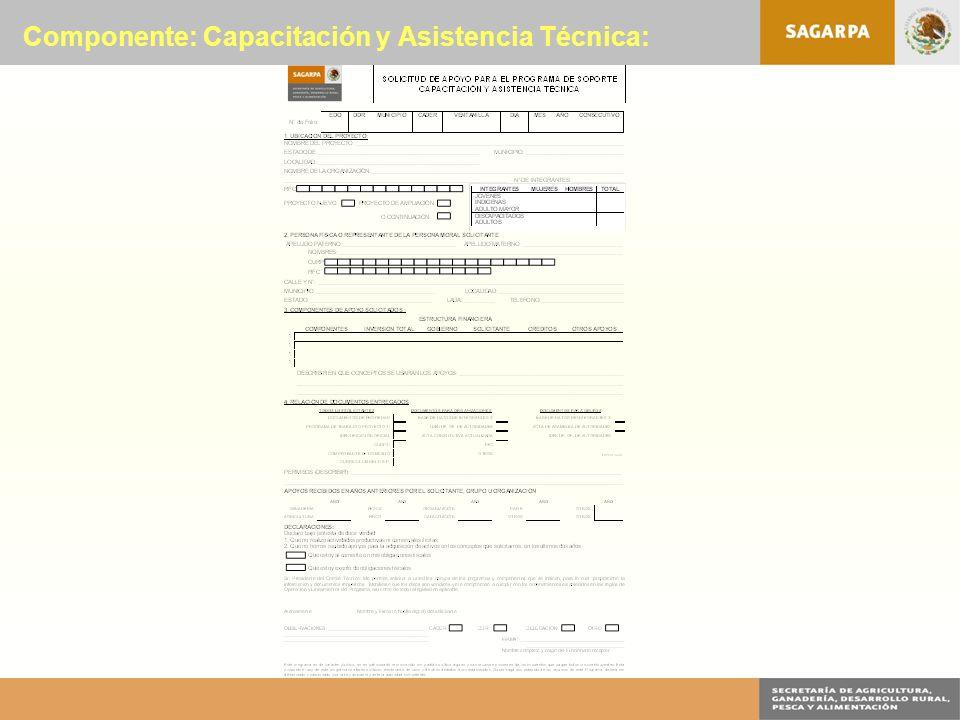 Componente: Capacitación y Asistencia Técnica: