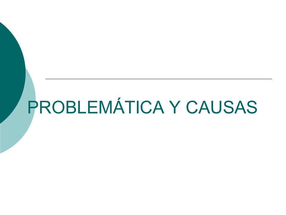 PROBLEMÁTICA Y CAUSAS