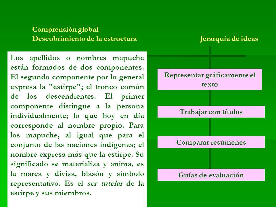 Comprensión global Descubrimiento de la estructura Jerarquía de ideas Los apellidos o nombres mapuche están formados de dos componentes.