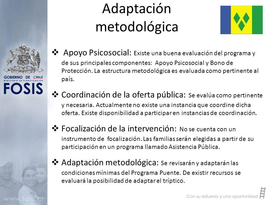 Adaptación metodológica  Apoyo Psicosocial: Existe una buena evaluación del programa y de sus principales componentes: Apoyo Psicosocial y Bono de Protección.