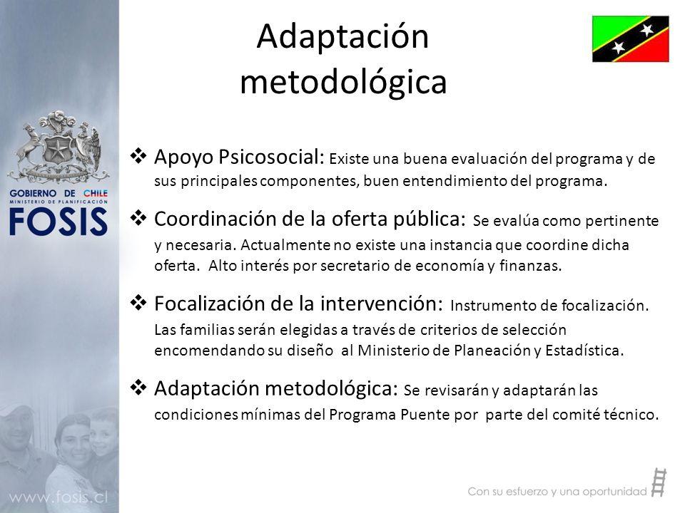 Adaptación metodológica  Apoyo Psicosocial: Existe una buena evaluación del programa y de sus principales componentes, buen entendimiento del programa.