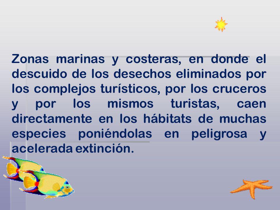 Zonas marinas y costeras, en donde el descuido de los desechos eliminados por los complejos turísticos, por los cruceros y por los mismos turistas, caen directamente en los hábitats de muchas especies poniéndolas en peligrosa y acelerada extinción.