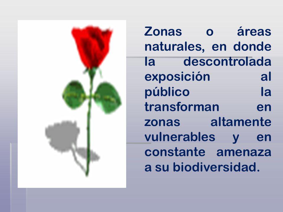Zonas o áreas naturales, en donde la descontrolada exposición al público la transforman en zonas altamente vulnerables y en constante amenaza a su biodiversidad.