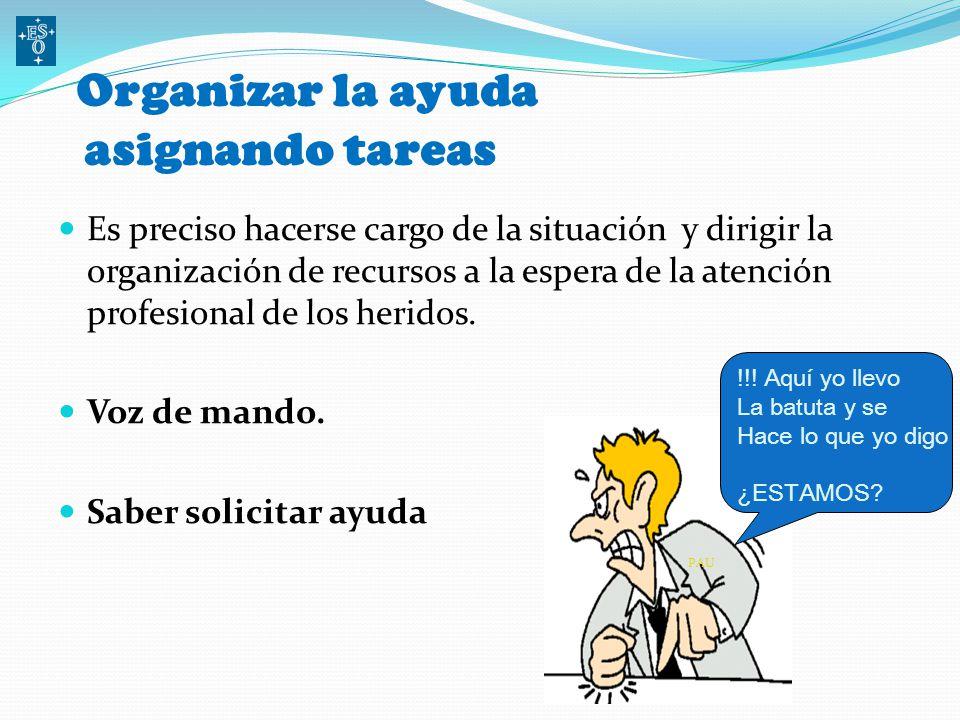 O rganizar la ayuda asignando tareas Es preciso hacerse cargo de la situación y dirigir la organización de recursos a la espera de la atención profesional de los heridos.